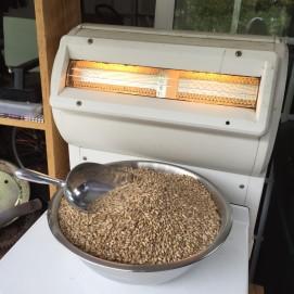 Grain scale